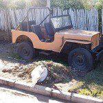 Dupla de Jeep Willys (afins!)
