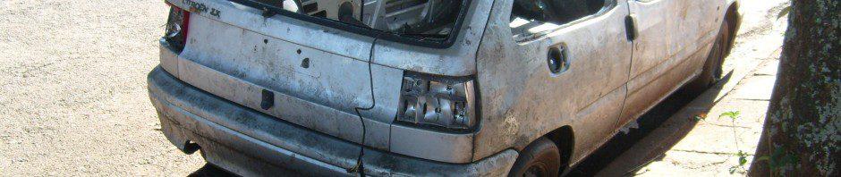 ugustavo-silvestre-citro-940x198 Citroën ZX
