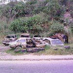 À beira da estrada… Vários…