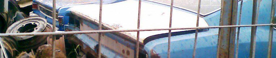 uilian-opala-2-940x198 GM Opala (2)