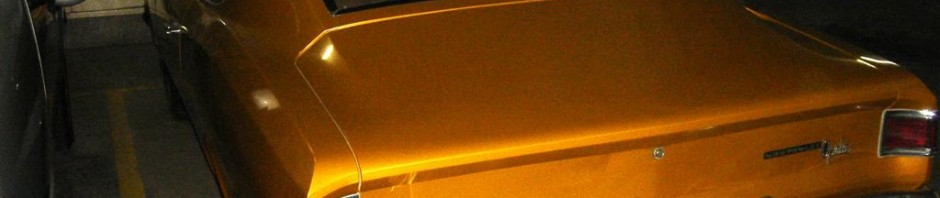 dsc02221-large-940x198 GM Opala