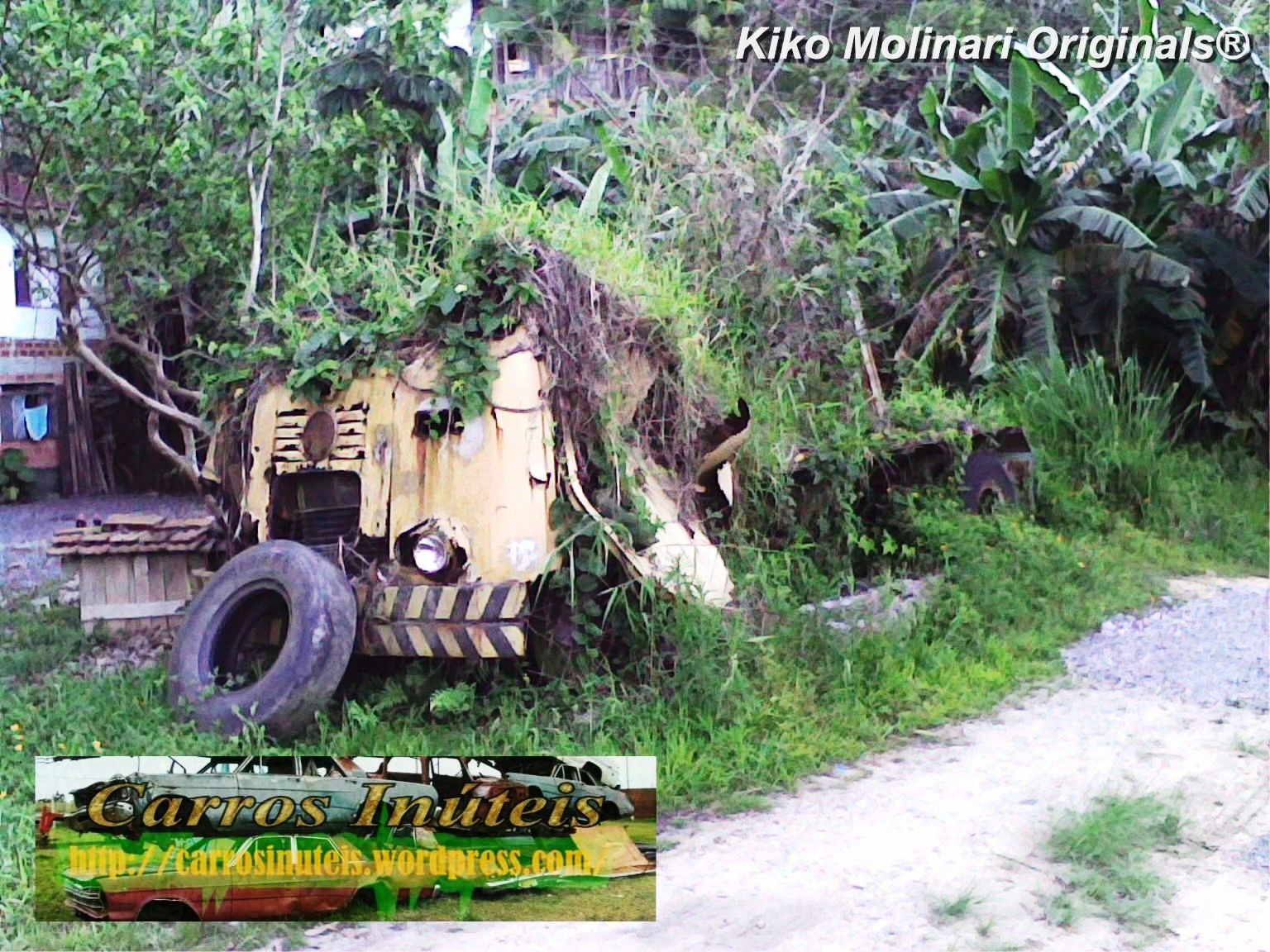 fnm-abandonado-kiko-molinari-itapema-sc-1 Caminhão FNM