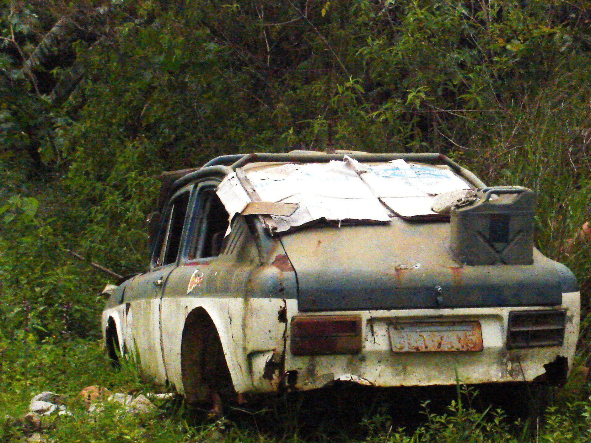 uPaula-Fernandes-tl-santuario Volkswagen TL