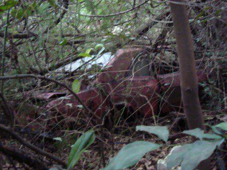 uRafinha-corcel-ferro-velho-do-Charuto-019-450x337 Ford Corcel