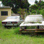 Chevrolet Caravan e Opala