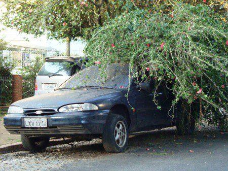 uMKTPOAMondeo1-450x337 Ford Mondeo