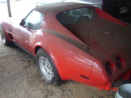 Antonio-Soto-Vette-USA-Brasilis-450x337 Corvette