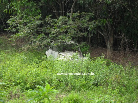 Renato-Roraima-fusca-abandonado1-450x337 Volkswagen Fusca