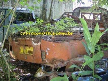 Remi-Ipira-SC-kombi-450x337 VW Kombi