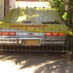 Ford Landau, Luis Fernando, Novo Hamburgo, RS