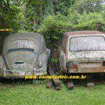 VWs Fusca 1965 e Variant, Rafael Barouki – Pomerode, Santa Catarina