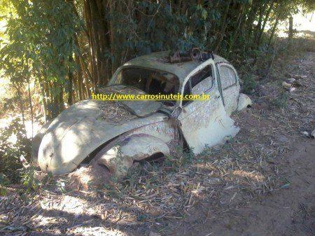 """Eduardo-fUSCA-Cambuquira-MG1-450x337 VW Fusca """"socadão"""", fotos by Eduardo, Cambuquira, MG"""