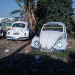 VW Fusca (cemitério!), Michel silva – Campinas-SP