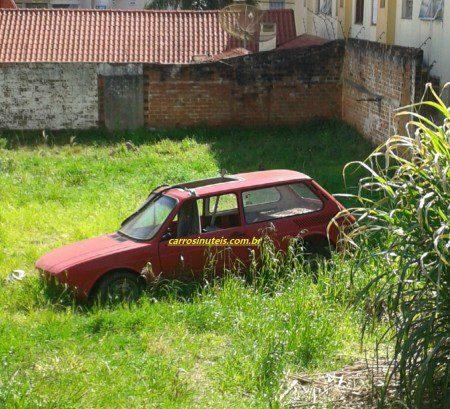 felipe-brasa-passo-fundo-450x409 VW Brasília, Felipe, Passo Fundo-RS