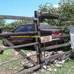 Alfa Romeo, Sapucaia do Sul-RS, Cássio