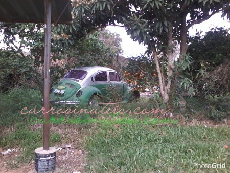 PhotoGrid_14342302497311-450x338 VW Fusca, Alegrete, RS, by Russel