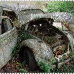 VW FUSCA. Joinville – SC. Fernando