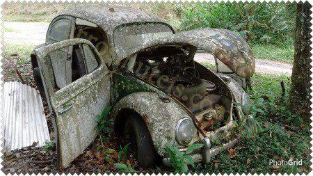 PhotoGrid_14396899162971-450x253 VW FUSCA. Joinville - SC. Fernando