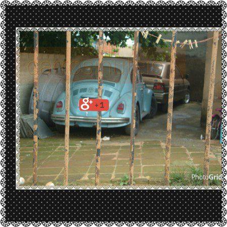 PhotoGrid_1449457385775-450x450 VW Fusca. Lucas. São Paulo, SP