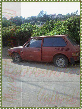 PhotoGrid_1458892113204-338x450 VW Brasilia. Gabriel, Miguel Pereira-RJ