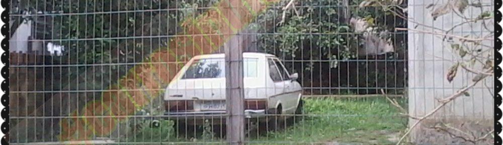 PhotoGrid_1463838968793-1000x288 VW Passat. Castro, Manoel Viana-RS