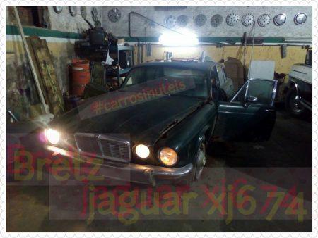 PhotoGrid_1464577289052-450x338 Resgate! Jaguar! Bretz, Iúna, ES