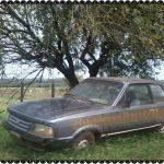 Ford Del Rey. Manoel Viana-RS, by Bola