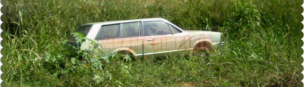 PhotoGrid_1465005173342-1000x288 Ford Belina. By Bastos, Goiânia, GO